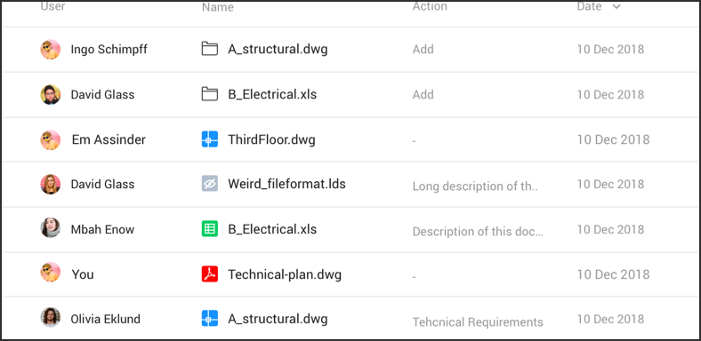 Detailed audit reports